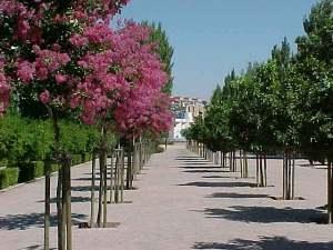Parque del Zaidin en Granada