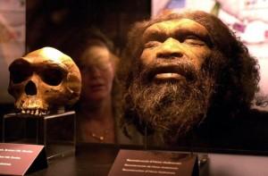 Museo de Evolución Humana
