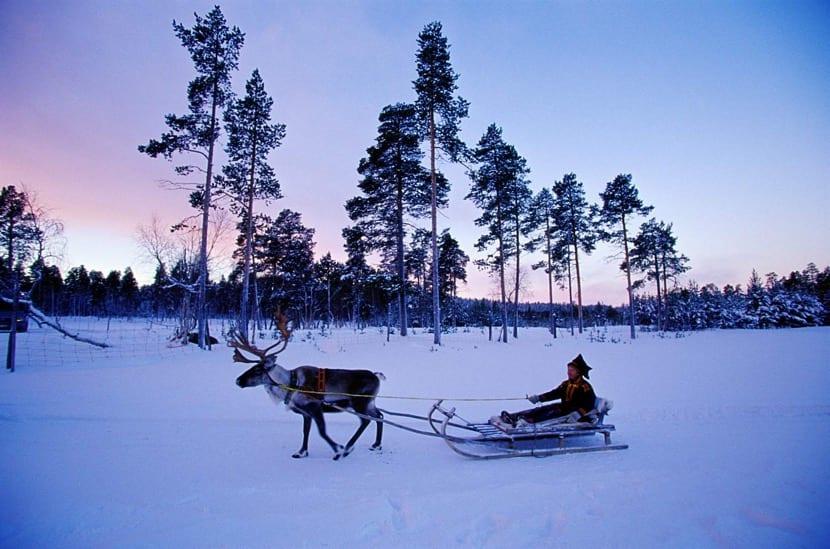 montar en reno en finlandia
