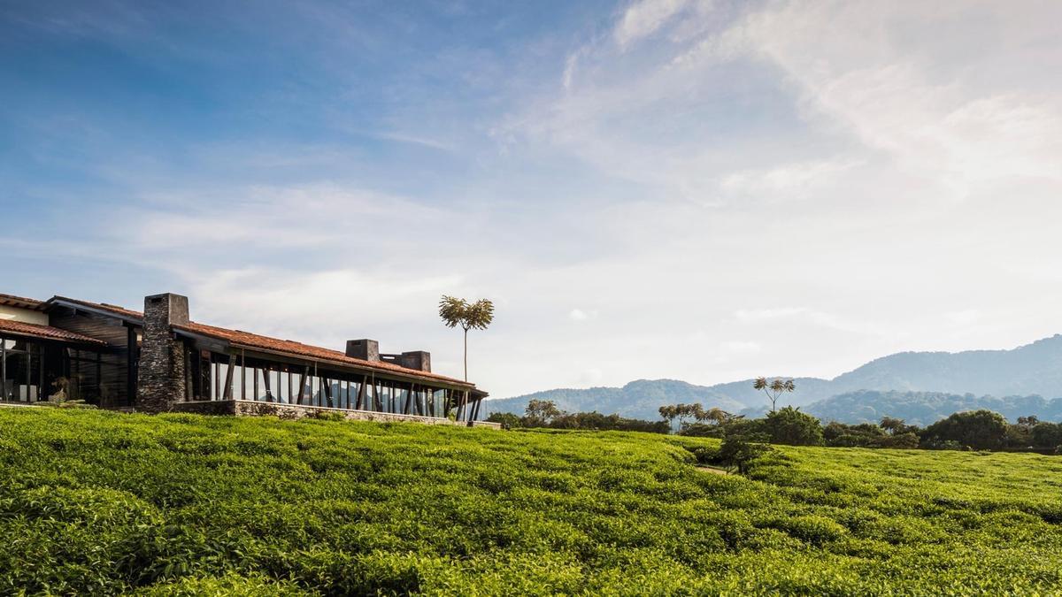 la calma de ruanda